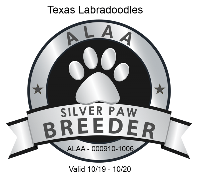 ALAA Silver Paw 2019 e1568814903424